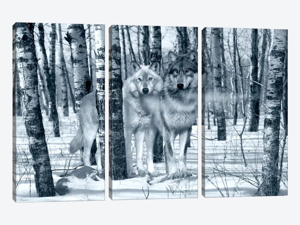 Snow Shadows Silvertones by Gordon Semmens 3-piece Canvas Wall Art