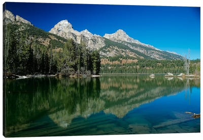 Grand Teton 06 Canvas Art Print