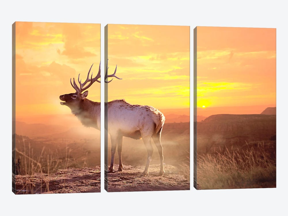 Elk Sunrise In The Badlands 3-piece Canvas Art Print