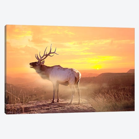 Elk Sunrise In The Badlands Canvas Print #7305} by Gordon Semmens Canvas Wall Art