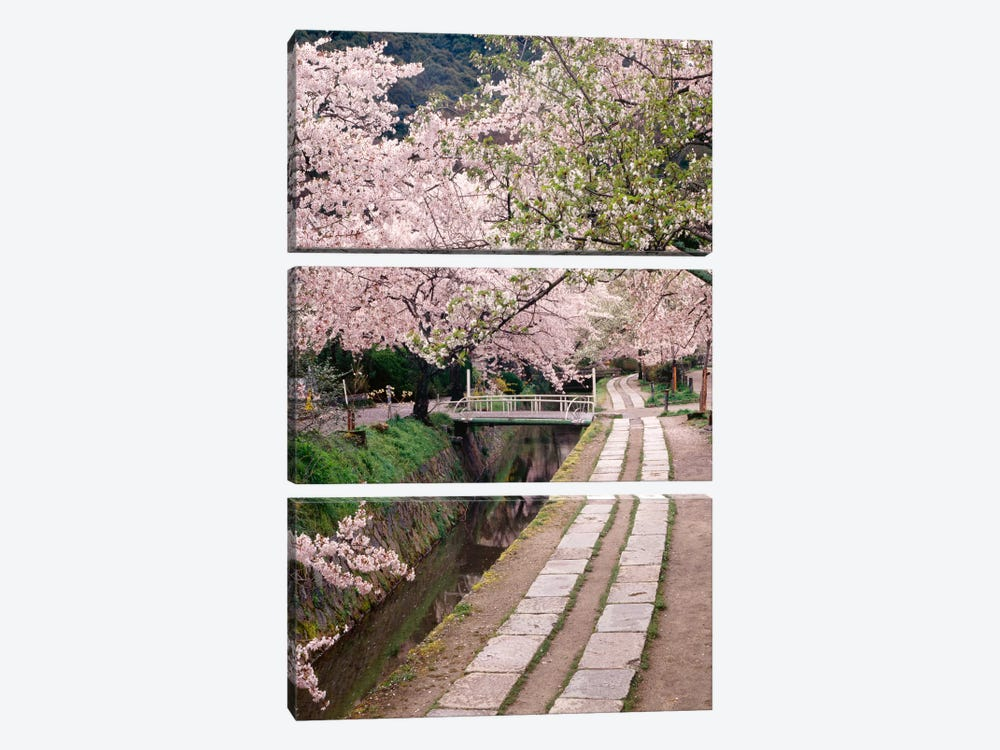 Governor's Walk I by Monte Nagler 3-piece Canvas Wall Art