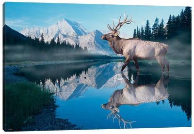 Reflections of Glacier Canvas Art Print