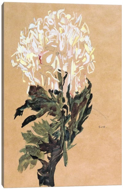 White Chrysanthemum Canvas Art Print