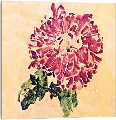 Red Chrysanthemum Canvas Print #8280