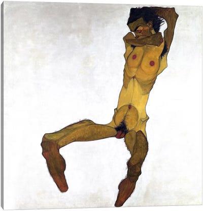 Seated Male Nude Canvas Art Print