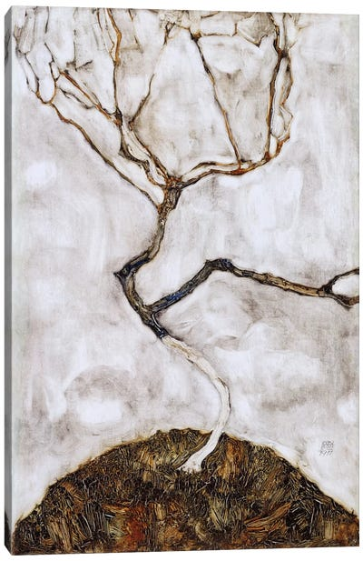 Small Tree in Late Autumn Canvas Art Print