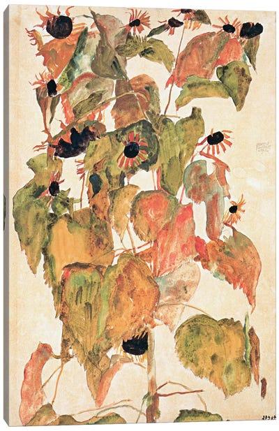 Sunflowers Canvas Print #8308