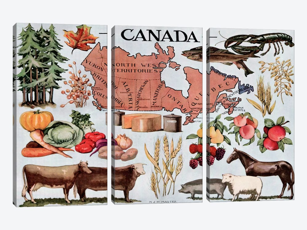 Canada's Natural Resources - Vintage Poster 3-piece Canvas Print