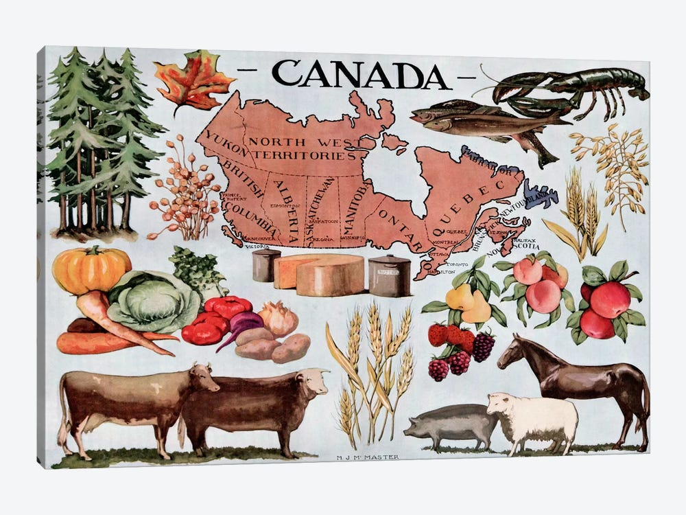 Canada's Natural Resources - Vintage Poster by Unknown Artist 1-piece Canvas Print