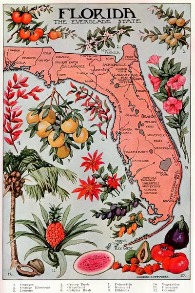 florida map of natural resources