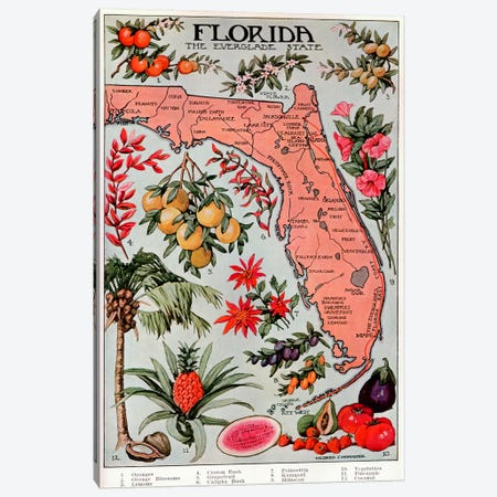 State Map of Florida (Natural Resources) - Vintage Poster Canvas Print #8810} by Unknown Artist Canvas Print