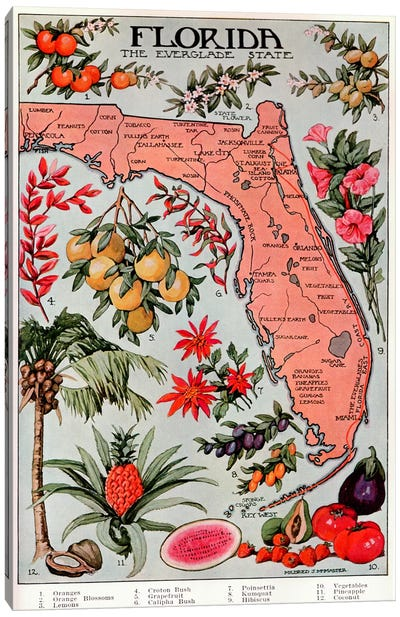 State Map of Florida (Natural Resources) - Vintage Poster Canvas Art Print