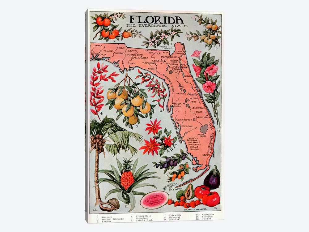 State Map of Florida (Natural Resources) - Vintage Poster by Unknown Artist 1-piece Canvas Art Print