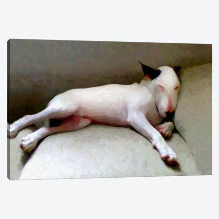 Bull Terrier Canvas Print #8889} by Michael Tompsett Canvas Art