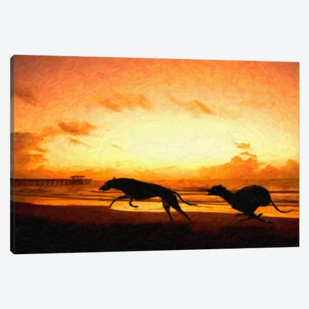 Greyhounds on Beach at Sunset Canvas Print #8891} by Michael Tompsett Canvas Art Print