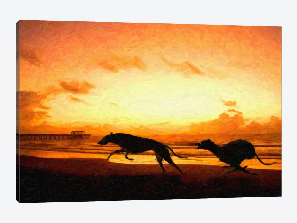 Greyhounds on Beach at Sunset by Michael Tompsett 1-piece Canvas Wall Art