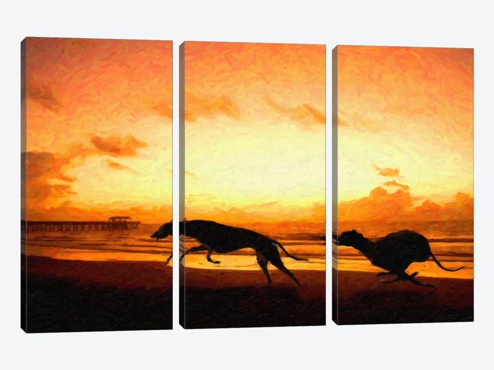 Greyhounds on Beach at Sunset by Michael Tompsett 3-piece Canvas Artwork