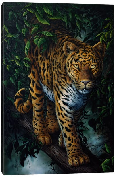 Watchful Eyes (Tiger) Canvas Art Print