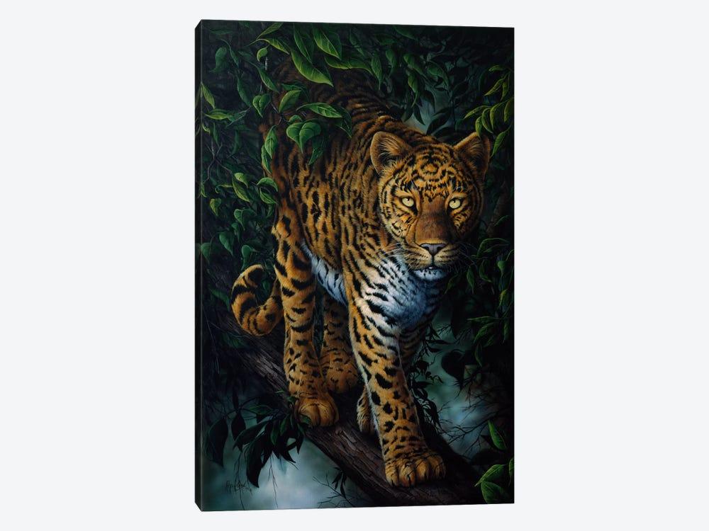 Watchful Eyes (Tiger) by Jenny Newland 1-piece Canvas Art Print