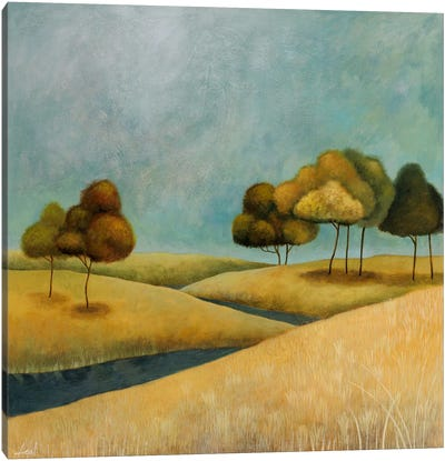 River Canvas Print #9084