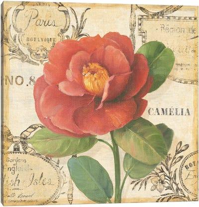 Botanique II Canvas Print #9092