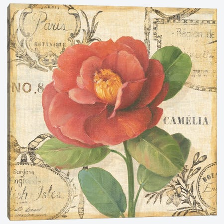 Botanique II Canvas Print #9092} by Lisa Audit Canvas Wall Art