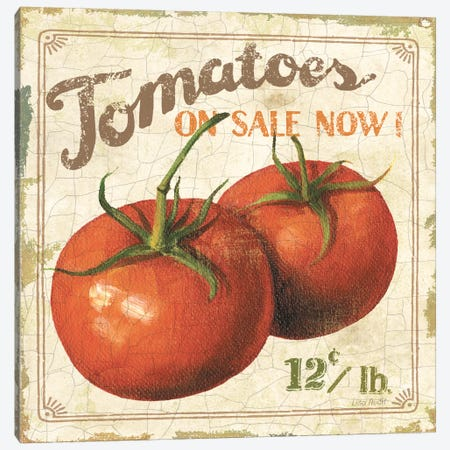 Tomatoes on Sale Now (On Special I) Canvas Print #9098} by Lisa Audit Canvas Wall Art