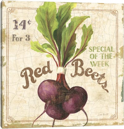 Red Beets (On Special III) Canvas Art Print