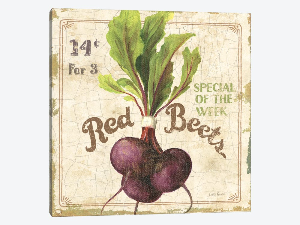 Red Beets (On Special III) by Lisa Audit 1-piece Canvas Wall Art