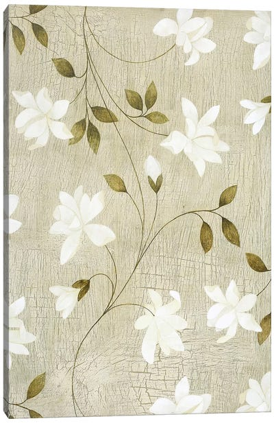 White Passion Canvas Print #9110