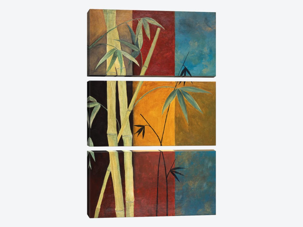 Bamboo by Pablo Esteban 3-piece Canvas Art