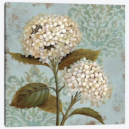 Ornament Canvas Print #9141} by Daphne Brissonnet Canvas Wall Art