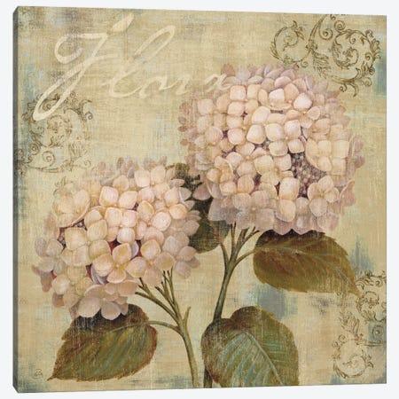 Ornament II Canvas Print #9142} by Daphne Brissonnet Canvas Artwork