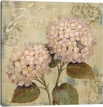 Ornament II Canvas Art Print