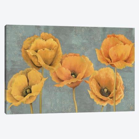Sunset Canvas Print #9149} by Daphne Brissonnet Canvas Artwork
