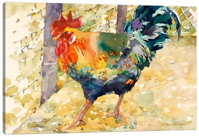 Colorful Rooster Canvas Art Print