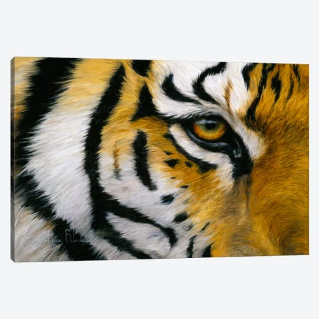 Eye of The Tiger Canvas Print #9160} by Lucie Bilodeau Canvas Wall Art
