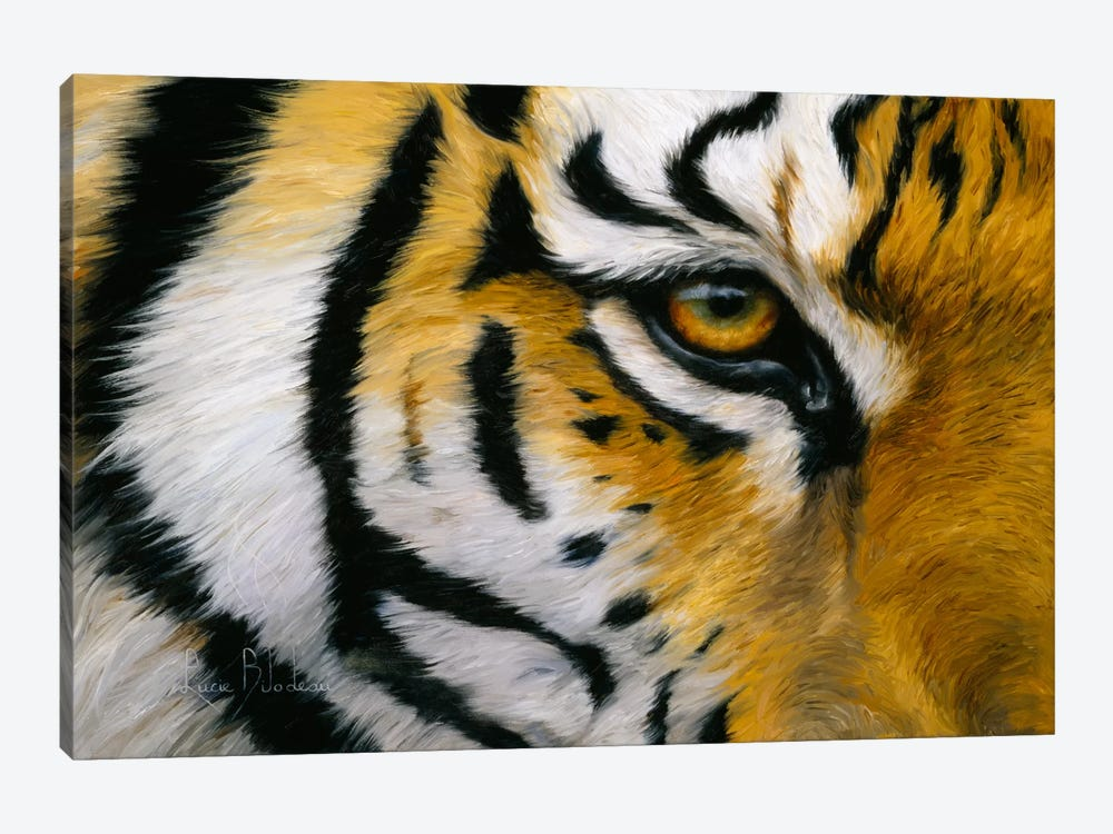 Eye of The Tiger by Lucie Bilodeau 1-piece Canvas Artwork