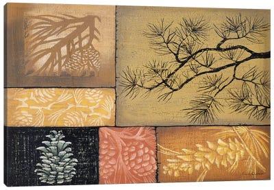 Pine Cones Canvas Art Print