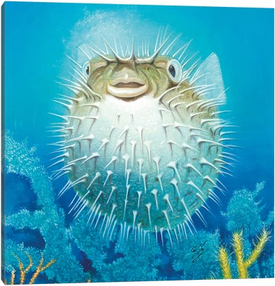 Puffer Fish Canvas Art Print