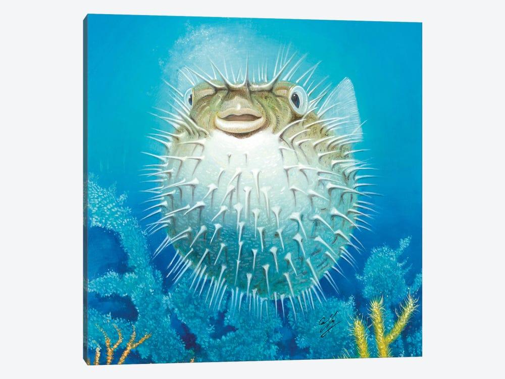 Puffer Fish by Durwood Coffey 1-piece Canvas Art