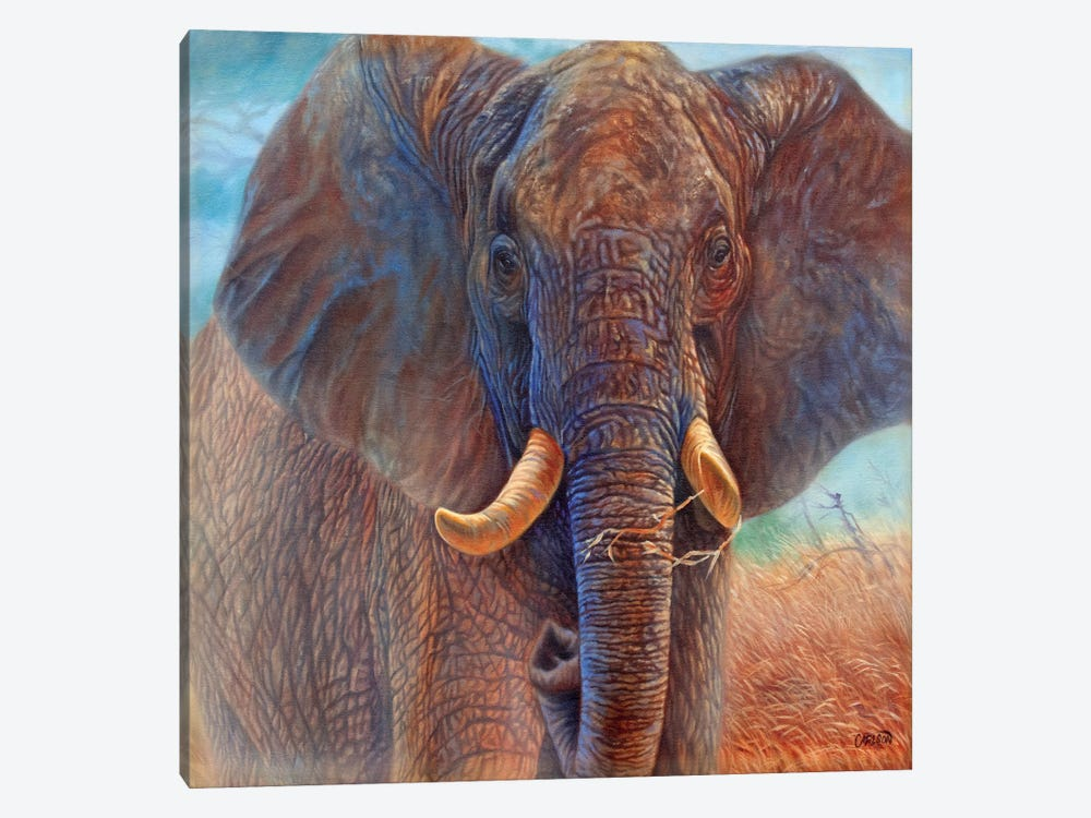 Giant (Elephant) by Cory Carlson 1-piece Canvas Wall Art