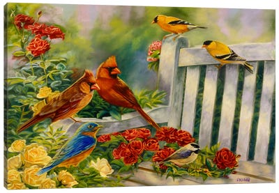 Where Friends Meet (Birds) Canvas Print #9240