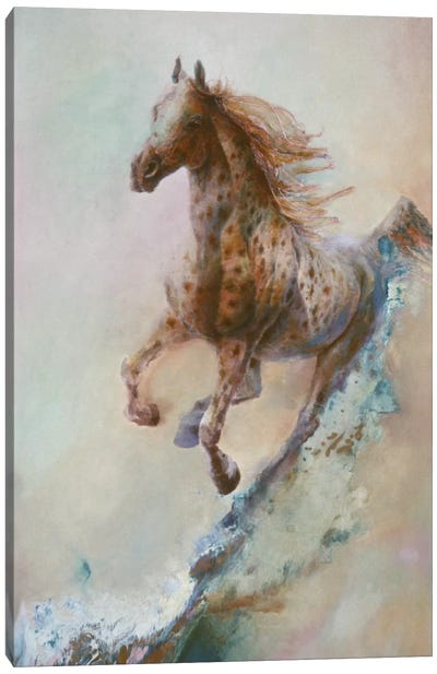 Appaloosa Run (Running Horse) Canvas Print #9241