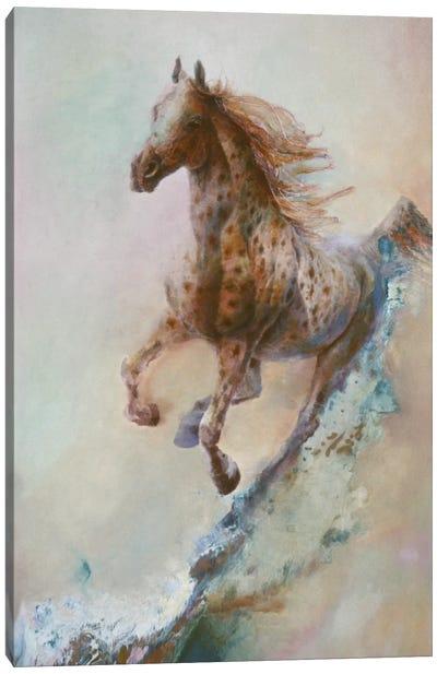 Appaloosa Run (Running Horse) Canvas Art Print