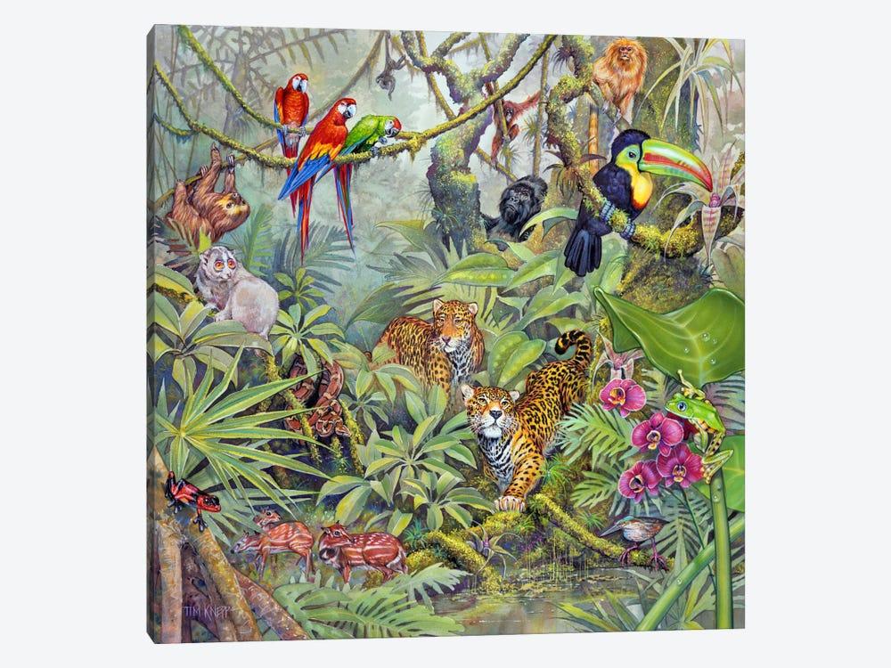 The Rainforest by Tim Knepp 1-piece Canvas Artwork