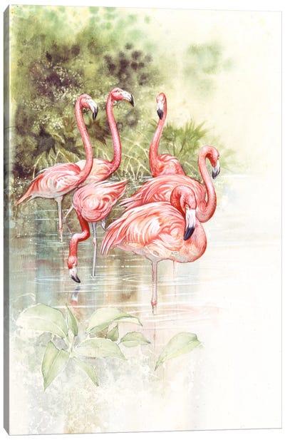 Flamingo Bird Canvas Art Print