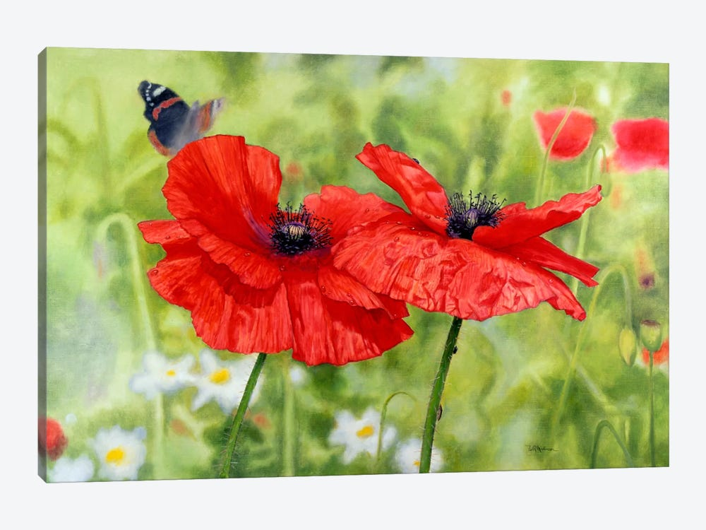 Poppies And Butterfly by Bill Makinson 1-piece Canvas Print