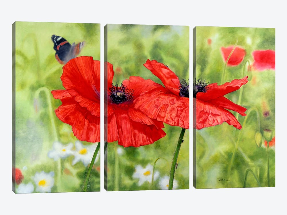 Poppies And Butterfly by Bill Makinson 3-piece Canvas Art Print