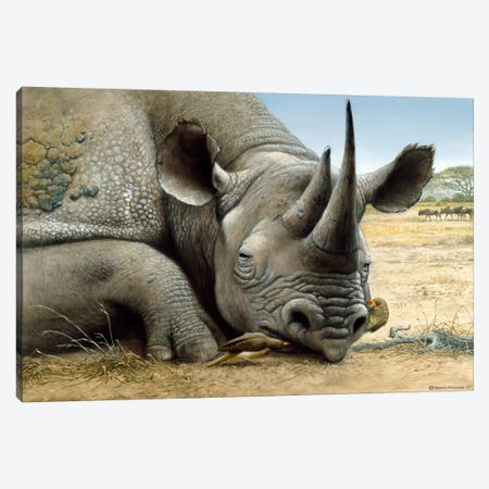Black Rhino Canvas Print #9291} by Harro Maass Canvas Art